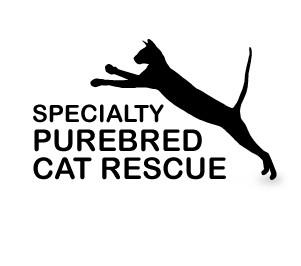 Specialty Purebred Cat Rescue