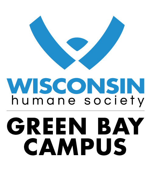 Pets For Adoption At Wisconsin Humane Society Green Bay Campus In