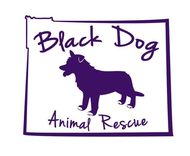 Black Dog Animal Rescue
