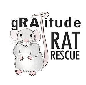 gRATitude Rat Rescue