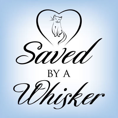 Saved By A Whisker Rescue