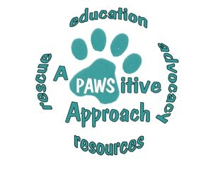 A Pawsitive Approach