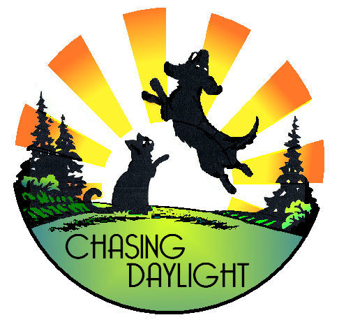 Chasing Daylight Animal Shelter