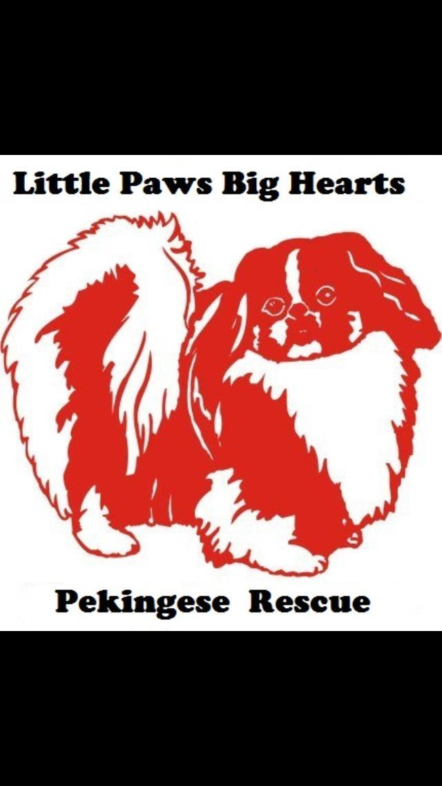 Little Paws Big Hearts Pekingese Rescue