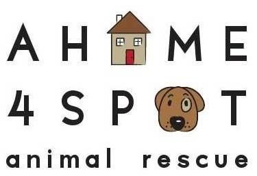 A Home 4 Spot