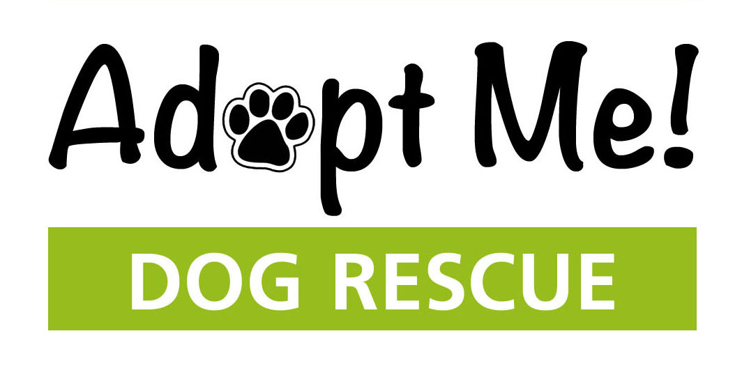 Home To Stay Dog Rescue Phone Number