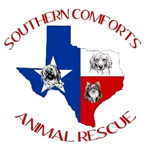 Southern Comforts Animal Rescue