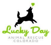 Lucky Day Animal Rescue of Colorado