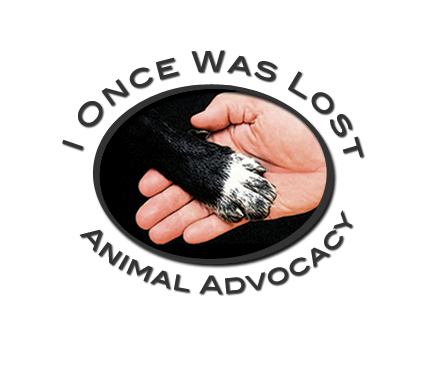 I Once Was Lost Animal Advocacy