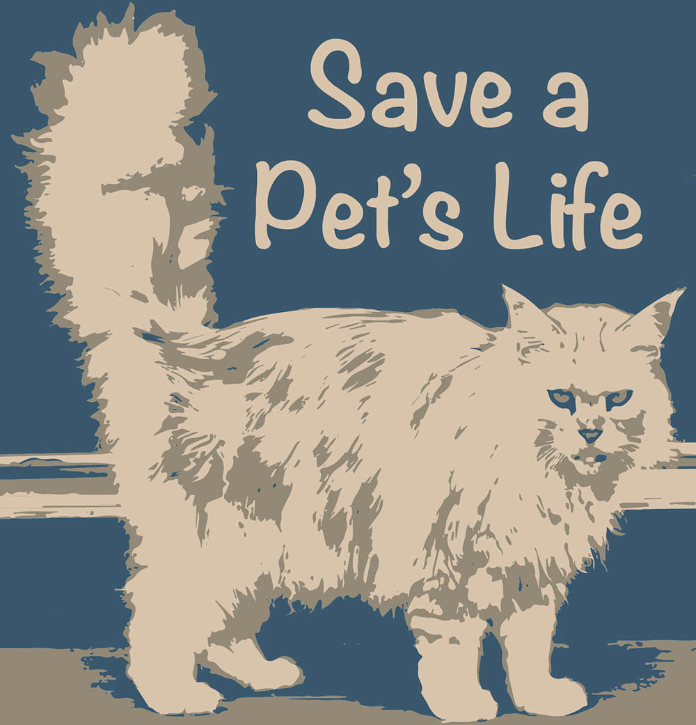 Save a Pet's Life Derry