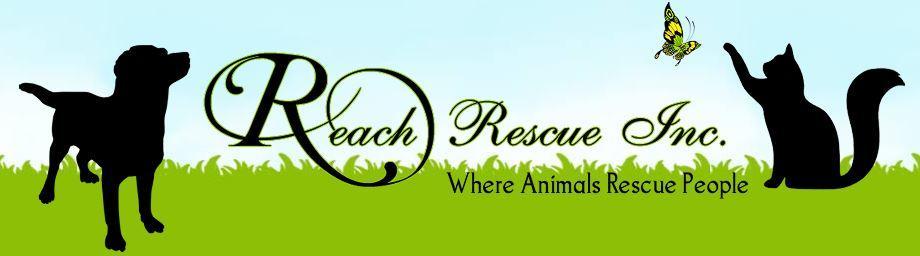 REACH Rescue Inc.