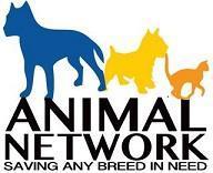 Animal Network