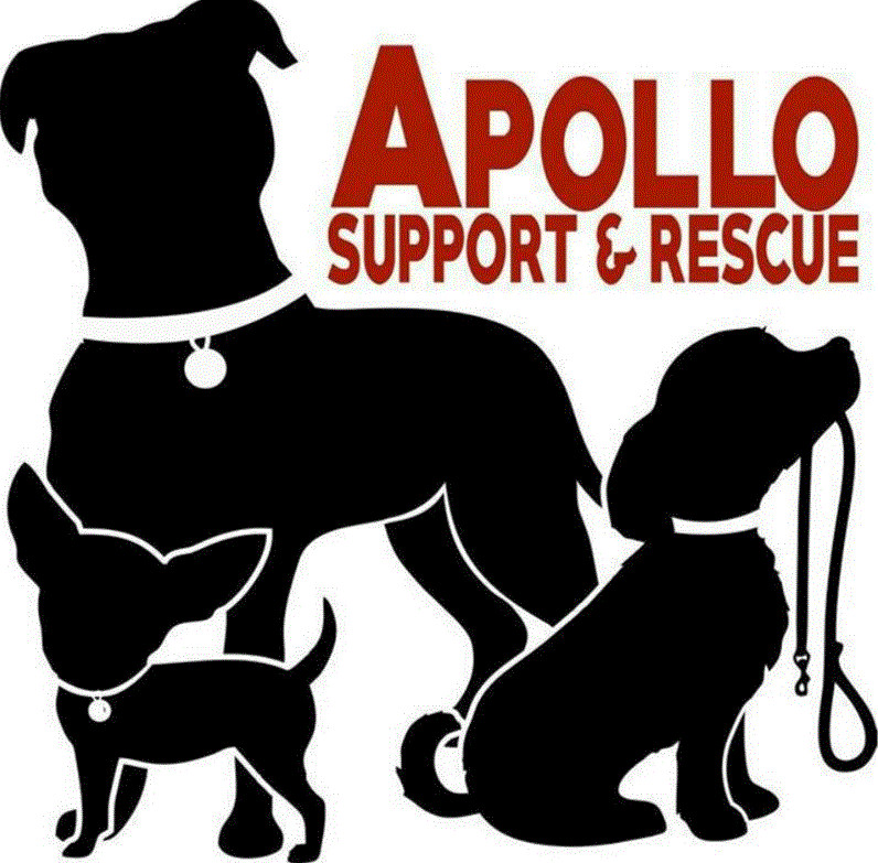 Apollo Support & Rescue
