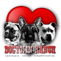Dogtown Ranch Sanctuary, Rescue & Rehab Center
