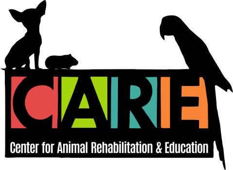 Center for Animal Rehab