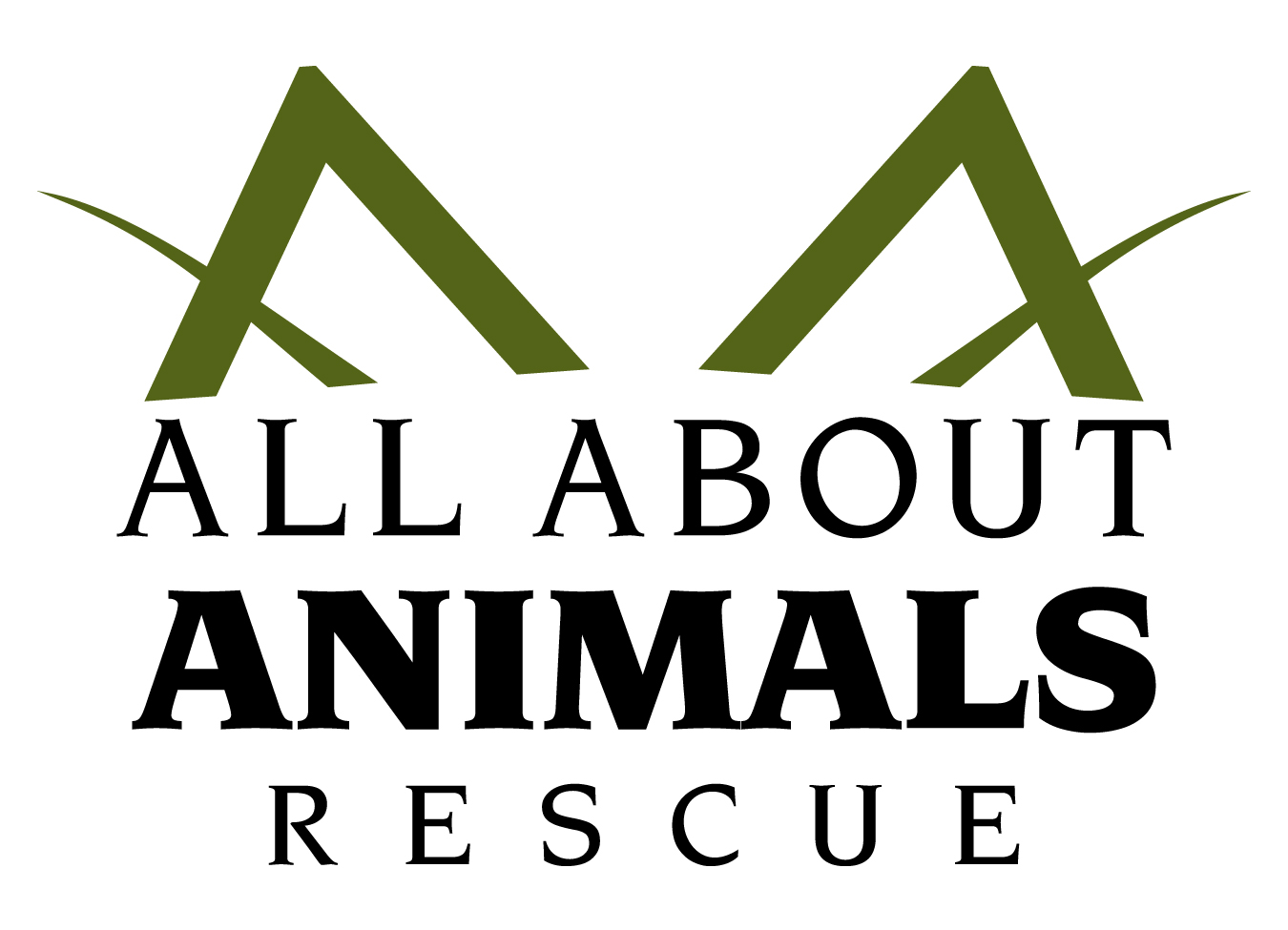 pets for adoption at all about animals rescue in phoenix az