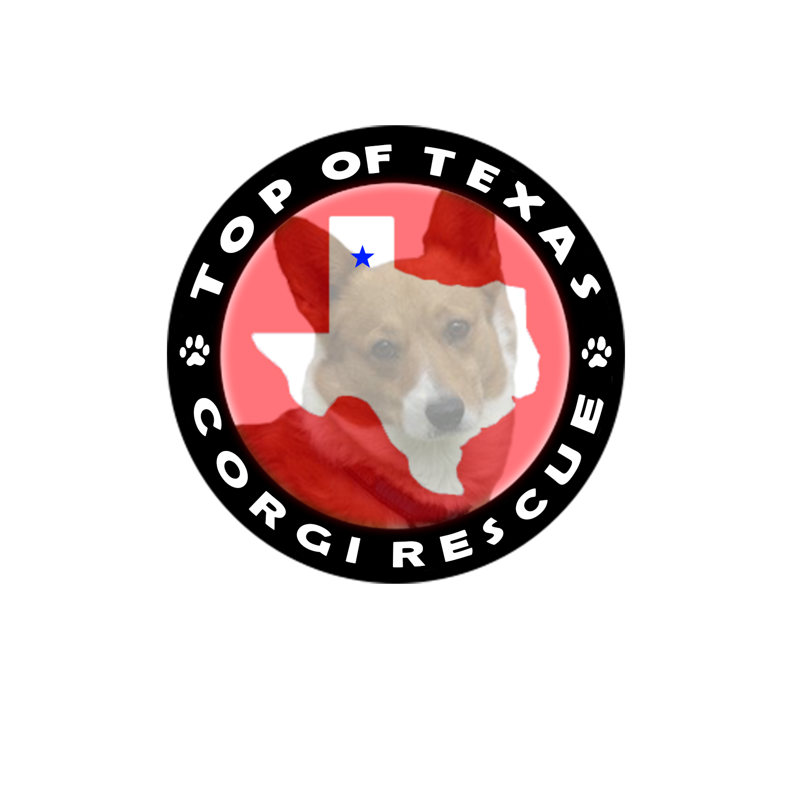 Pets for Adoption at Top of Texas Corgi Rescue, in Amarillo