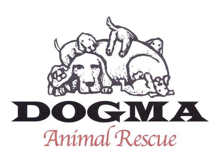 Dogma Animal  Rescue