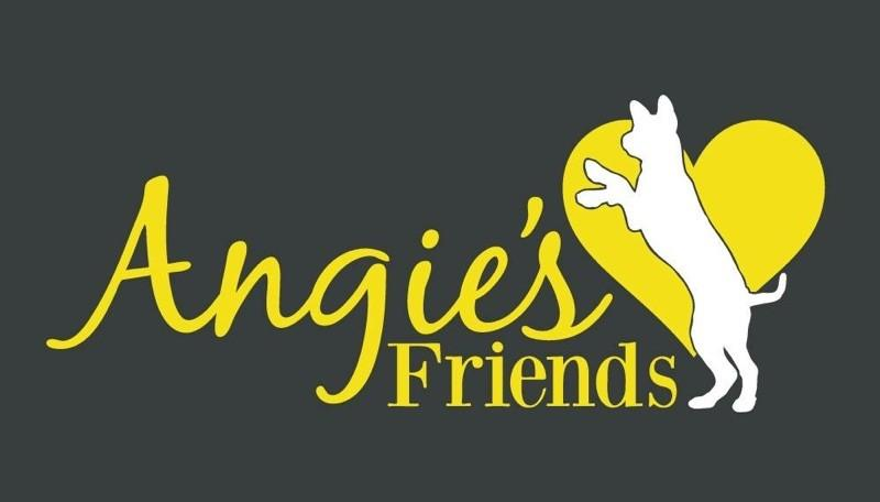 Angie's Friends