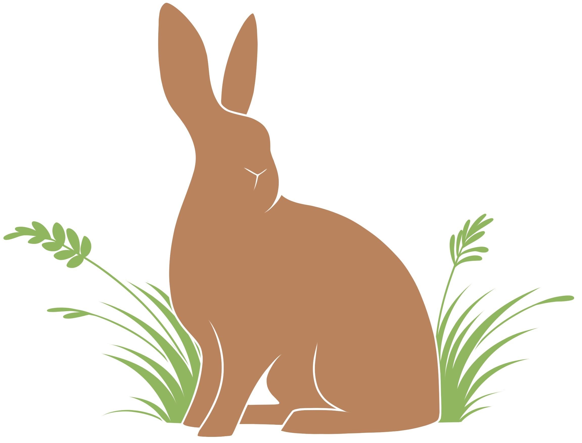 The Bunny Burrow Rabbit Rescue