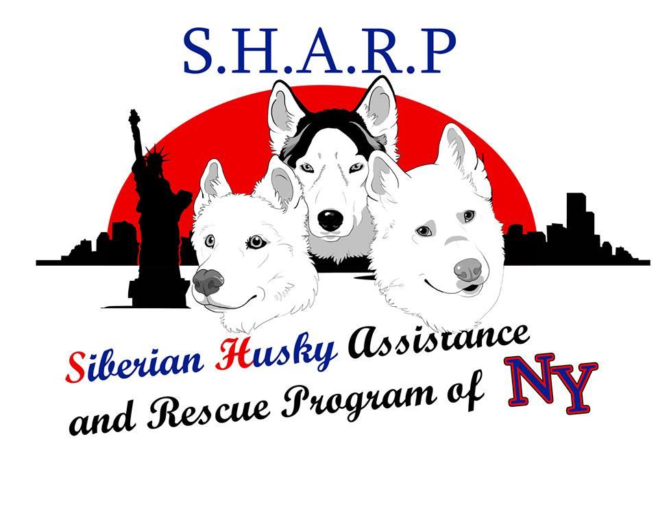 SHARP of NY