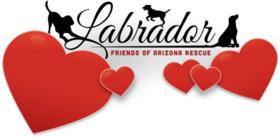 Labrador Friends of Arizona