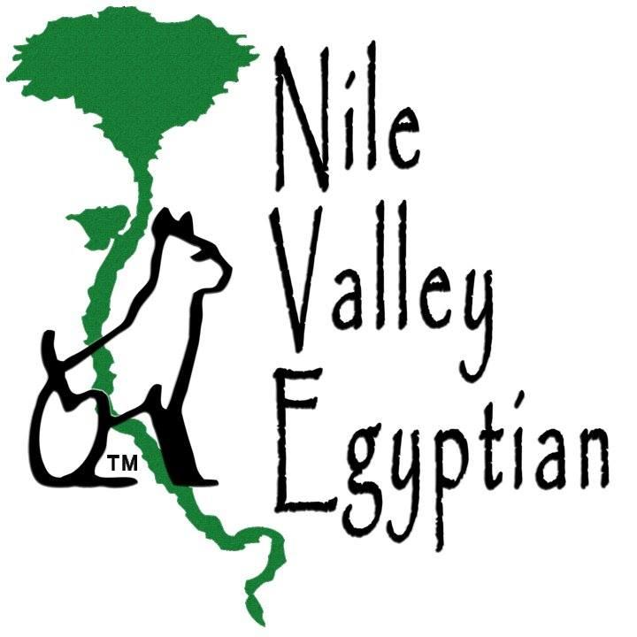 Nile Valley Egyptian Foundation