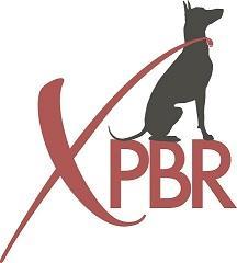 Xoloitzcuintli Primitive Breed Rescue