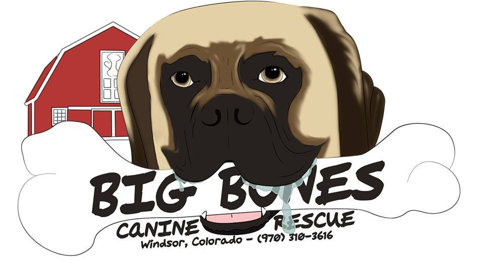 Big Bones Canine Rescue