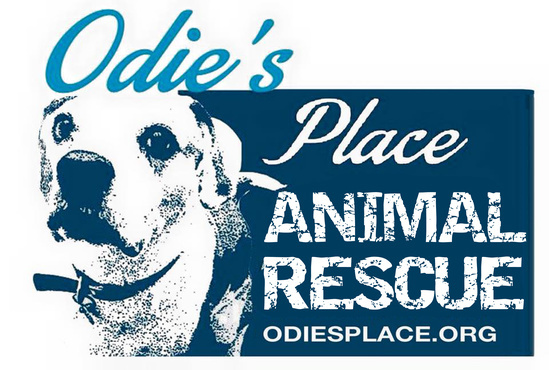 Odies Place