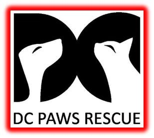DC PAWS Rescue