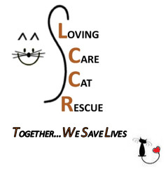 Loving Care Cat Rescue of Central PA