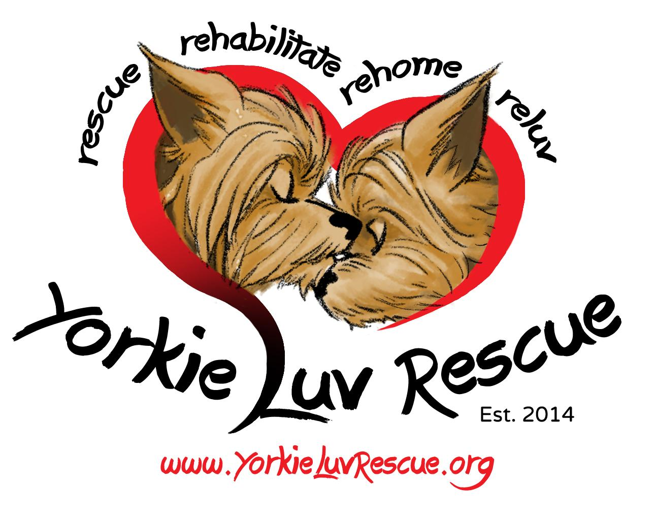 Pets For Adoption At Yorkie Luv Rescue In Goodyear Az Petfinder