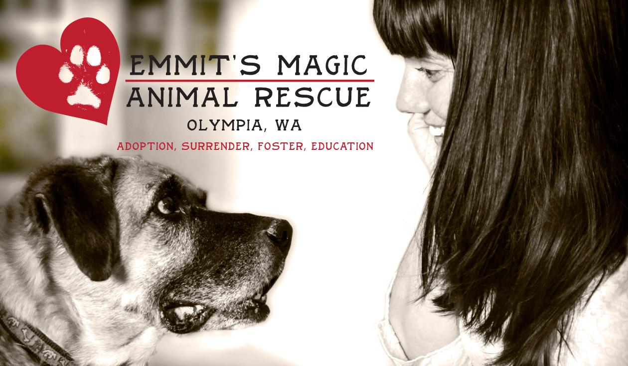 Emmit's Magic Animal Rescue