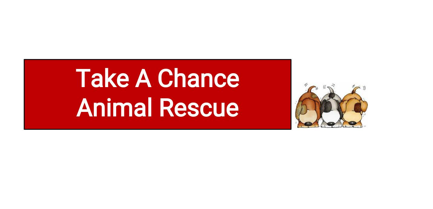 Take A Chance Animal Rescue