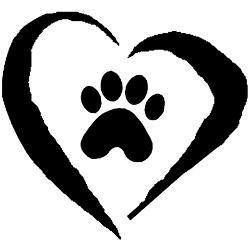 Image of: Pets Image Best Friends Animal Society Pets For Adoption At Champaign County Animal Welfare League In