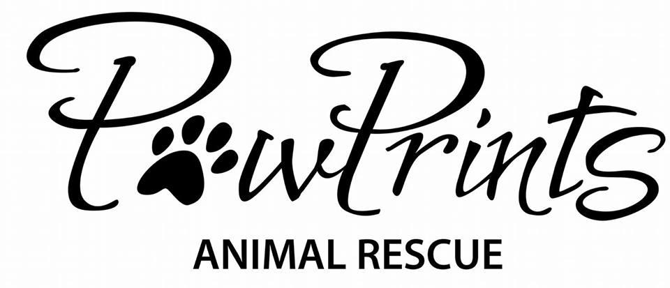 Pets for Adoption at PawPrints Animal Rescue, in Florence