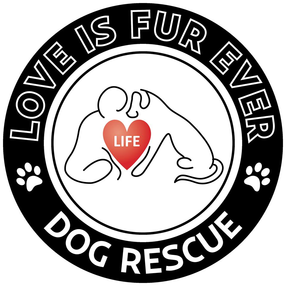 Love Is Fur Ever Dog Rescue