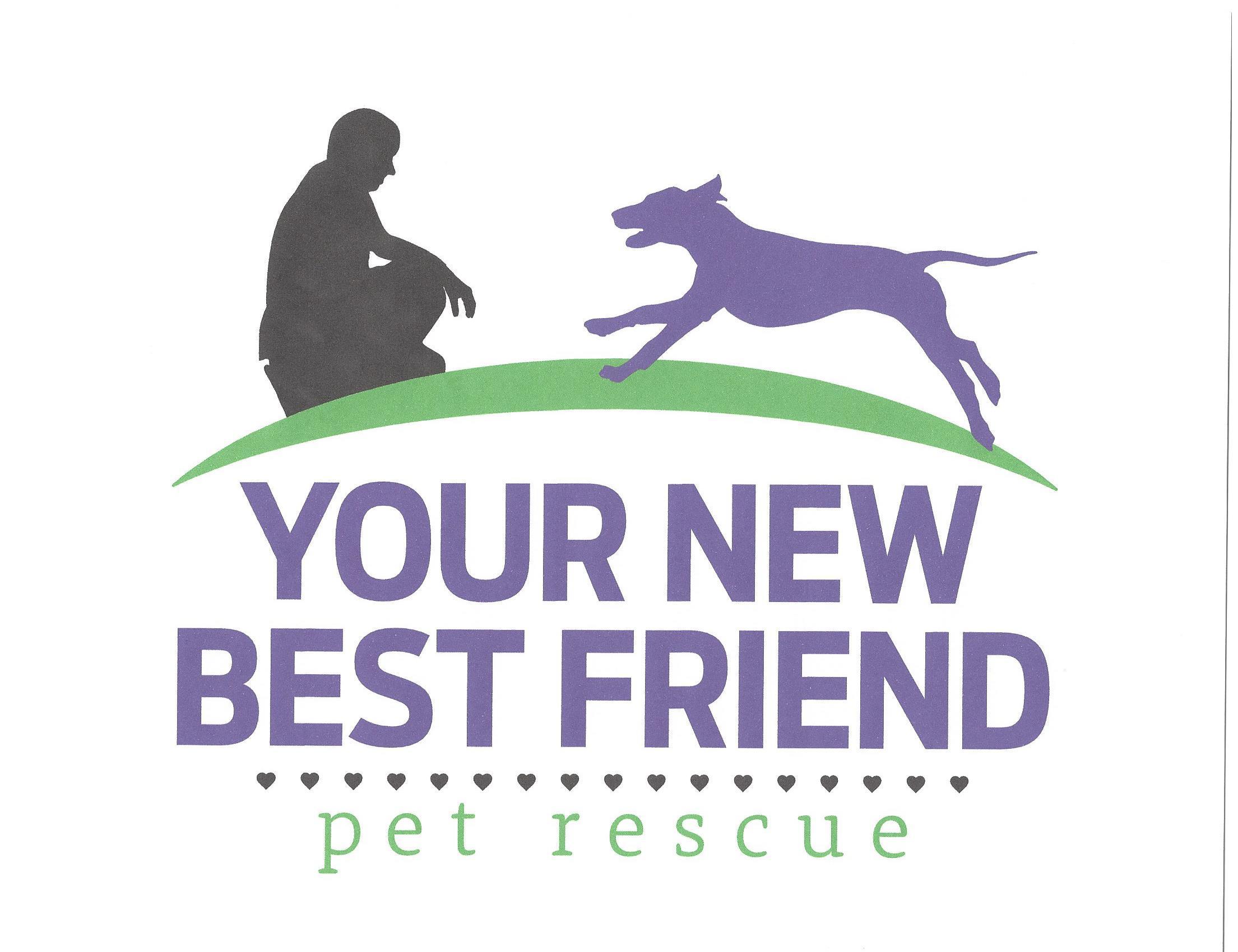 Your New Best Friend Pet Rescue