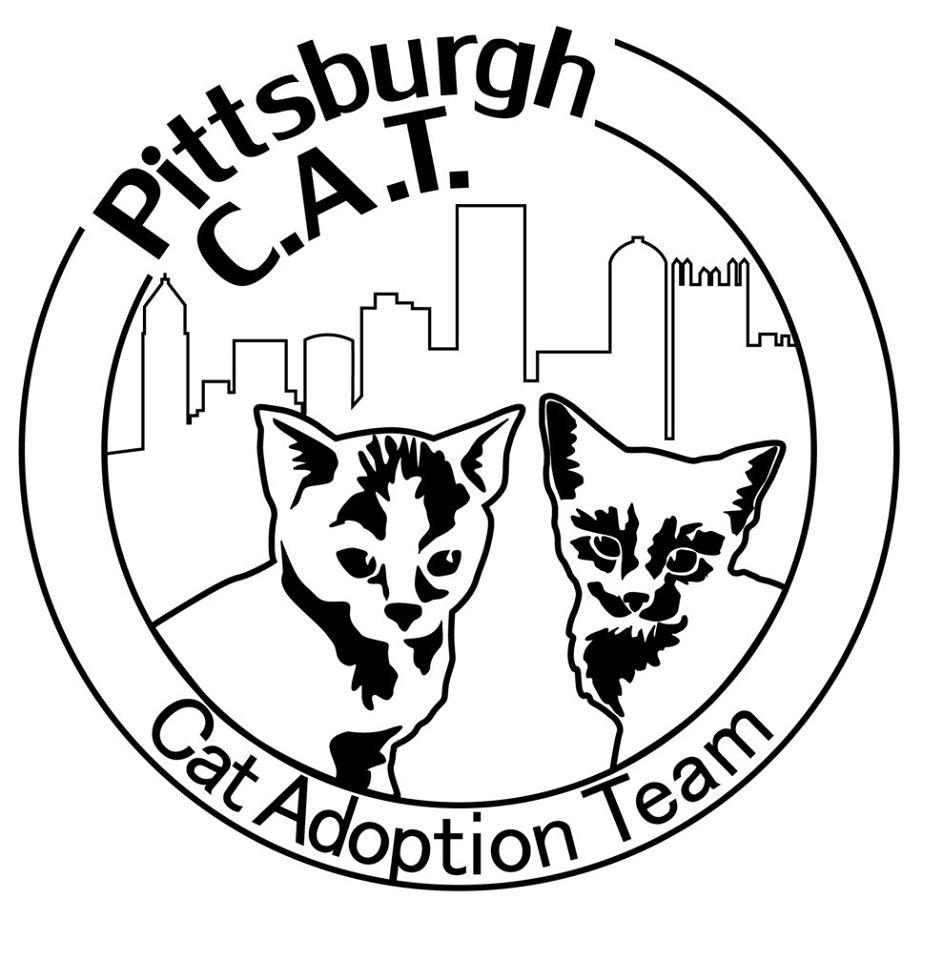 Pets for Adoption at Pittsburgh C.A.T., in Pittsburgh, PA