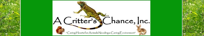 A Critter's Chance