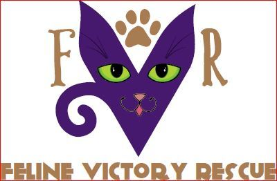 We're Feline Victory Rescue!