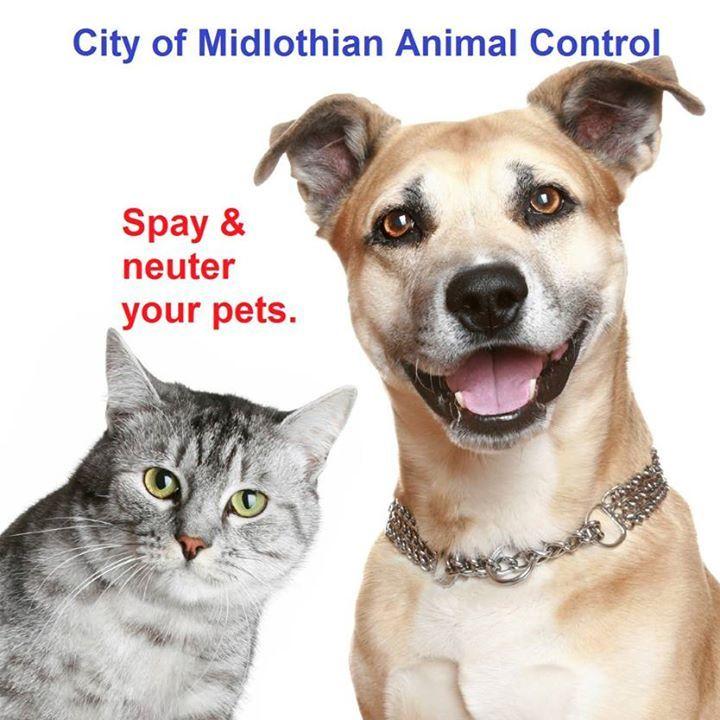 City of Midlothian Animal Shelter