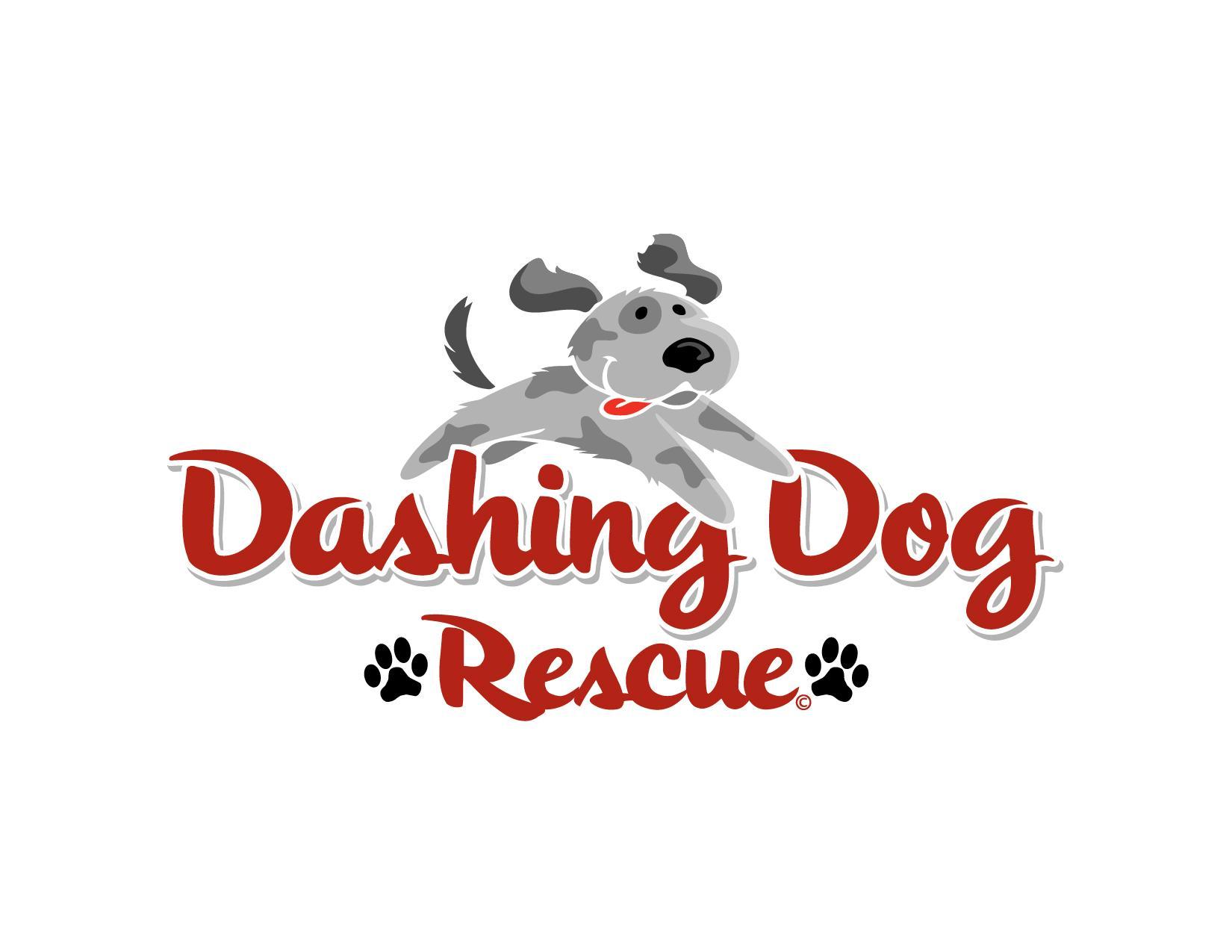 Dashing Dog Rescue