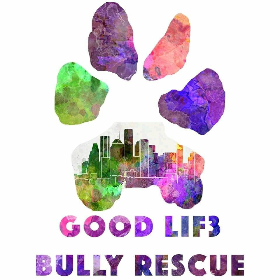 Good Lif3 Bully Rescue