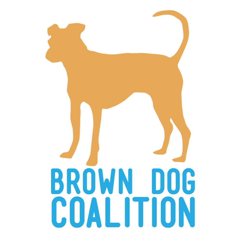 Brown Dog Rescue Hopkinton Ma