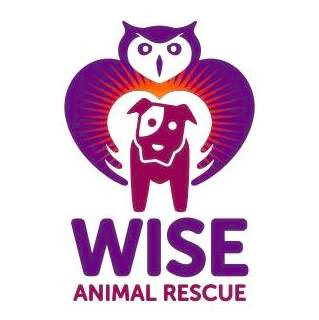Wise Animal Rescue