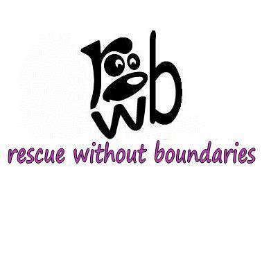 Rescue Without Boundaries