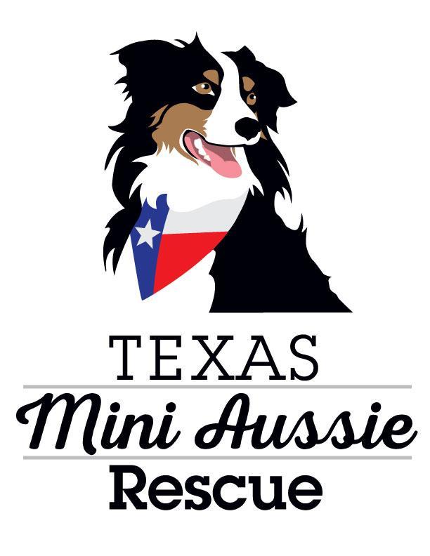 Pets for Adoption at Texas Mini Aussie Rescue, in Mesquite, TX