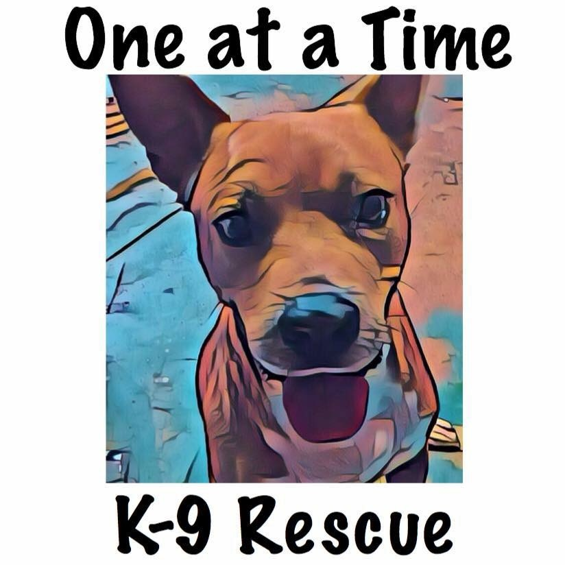One At A Time K-9 Rescue